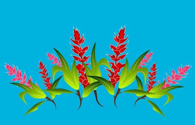 Paréos fleurs Opui bleu
