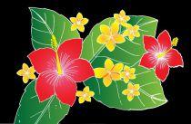 Paréos peint main Honolulu noir